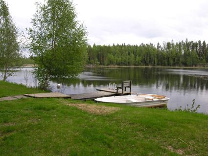 Kodisjoki