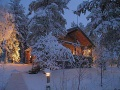 HONKAPIRTTI, VUOTUNKI, Kuusamo