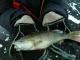 Tarkastele profiilia kalamies AL