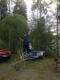 Tarkastele profiilia AnttiR