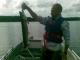 Tarkastele profiilia catfish